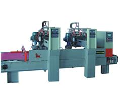 Lychee Surface Processing Machine